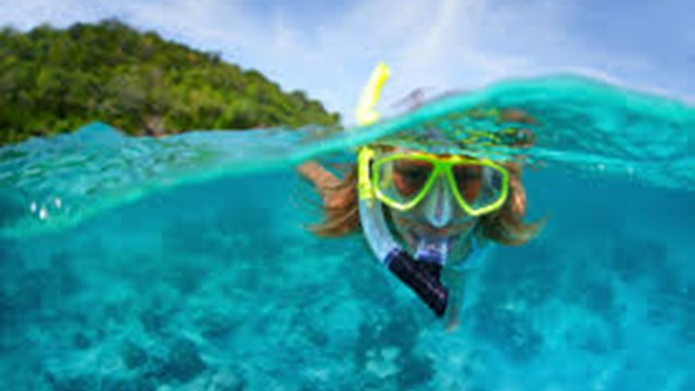 Snorkeling trips (Half day)